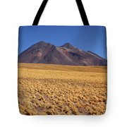 Golden Grasslands And Miniques Volcano Chile Tote Bag