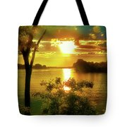 Golden Hour Beautiful Light Tote Bag