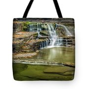 Golden Leaves And Mossy Tiers Of Enfield Glen Waterfall Tote Bag