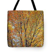 Golden Leaves - Oil Paint Tote Bag