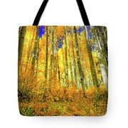 Golden Light Of The Aspens - Colorful Colorado - Aspen Trees Tote Bag