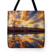 Golden Light On The Pond Tote Bag