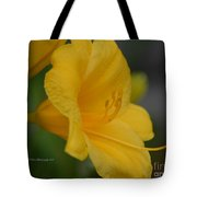 Golden Lily 18-2 Tote Bag