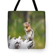 Golden Mantled Ground Squirrel Tote Bag