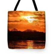 Golden Marsh Tote Bag