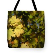 Golden Morning Tote Bag