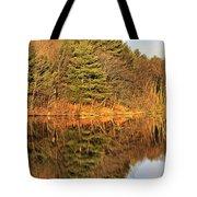 Golden Natural Light Tote Bag