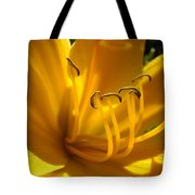 Golden Orange Lily Art Print Lilies Flowers Baslee Troutman Tote Bag
