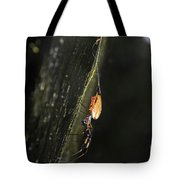 Golden Orb Spider Tote Bag