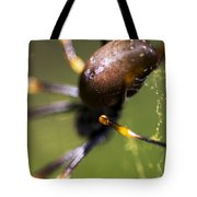 Golden Orb Spider Tote Bag