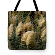Golden Pampas In The Wind Tote Bag