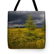 Golden Plains Tote Bag