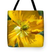 Golden Poppy Expose Tote Bag