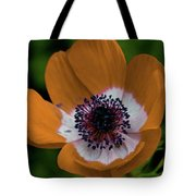 Golden Poppy Tote Bag