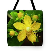Gold Rush In The Garden Tote Bag