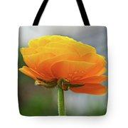 Golden Ranunculus Tote Bag