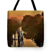 Golden Refelctions Tote Bag