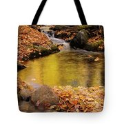 Golden Reflections In A Stream On The Blanchet Trail Gatineau Pa Tote Bag