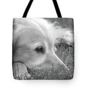 Golden Retriever Dog In The Cool Grass Monochrome Tote Bag