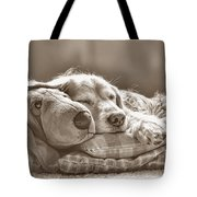 Golden Retriever Dog Sleeping With My Friend Sepia Tote Bag