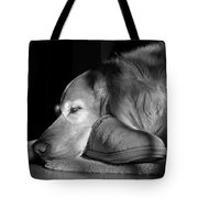 Golden Retriever Dog With Master's Slipper Black And White Tote Bag
