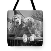 Golden Retrievers The Kiss Black And White Tote Bag