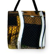 Golden Shed Tote Bag