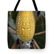 Golden Silk Spider 1 Tote Bag