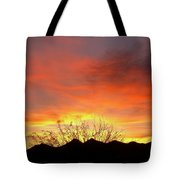 Unvieling Tote Bag