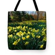 Golden Spring Carpet Tote Bag