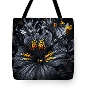 Golden Sun Touches Tote Bag