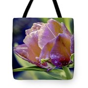 Golden Sunset Tulip Tote Bag