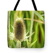 Golden Thistles Tote Bag