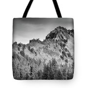 Golden Trail Crater Lake Rim Tote Bag
