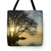 Golden Tranquility - Lacy Tree Silhouettes On The Lake Shore Tote Bag