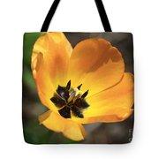 Golden Tulip Petals Tote Bag