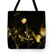 Golden Twinkles Tote Bag