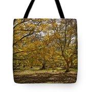 Golden Walnut Orchard II Tote Bag