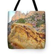 Golden Wash Tote Bag