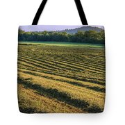 Golden Windrows Tote Bag