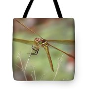 Golden-winged Skimmer Tote Bag
