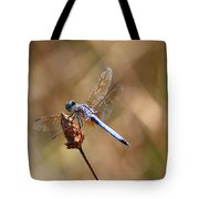 Golden Wings Tote Bag