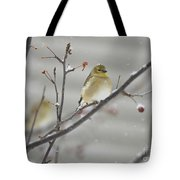 Golden With Snow Tote Bag
