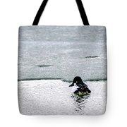 Goldeneye On Ice's Edge Tote Bag