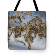 Goldenrod In The Snow Tote Bag