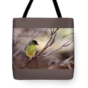 Goldfinch On Branch 032814a Tote Bag