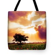 Golds At Sunset After The Rain Tote Bag
