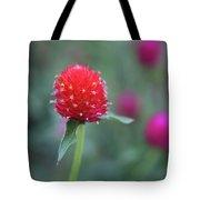 Gomphrena Flower Tote Bag