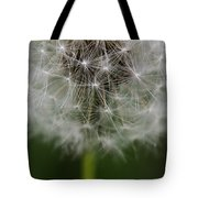 Gone To Seed - Color Tote Bag