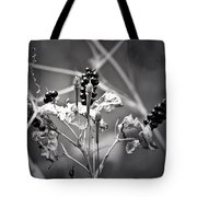 Gone To Seed Berries And Vines Tote Bag